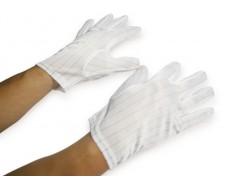 Găng tay thun PE trắng